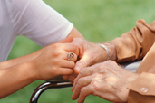 Senior Caregiver Elder Care Programs